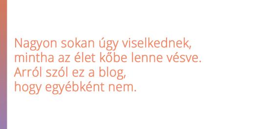 bubi1